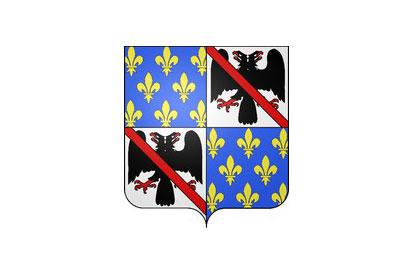Bandera Cachan