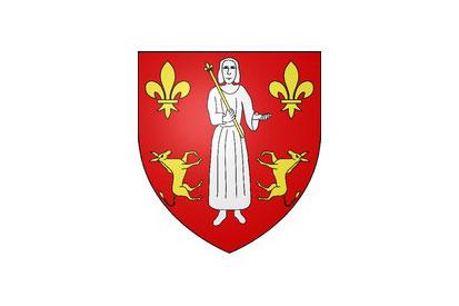 Bandera Asnières-sur-Oise