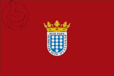 Bandera Medina del Campo