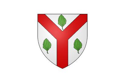 Bandera Saint-Avertin
