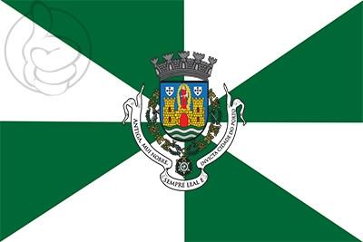 Bandera Oporto