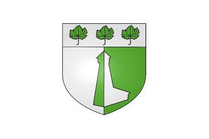 Bandera Miserey-Salines