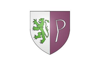 Bandera Petitmagny