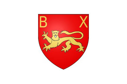 Bandera Bayeux