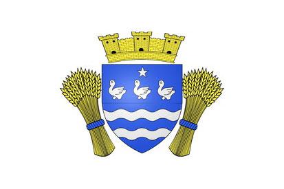 Bandera Cerny