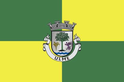 Bandera Vila de Ulme