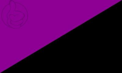 Bandera Anarquismo Feminista