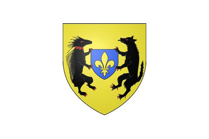 Bandera Blois