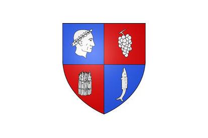 Bandera Soings-en-Sologne