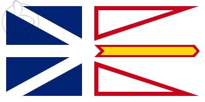 Bandera Terranova y Labrador