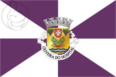 Bandera Oliveira do Hospital