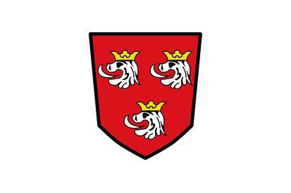 Bandera Estenfeld