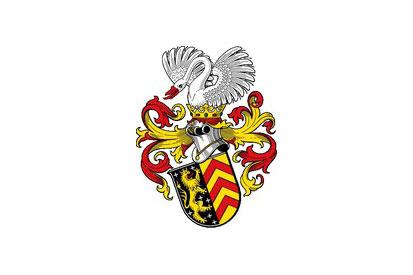 Bandera Hanau