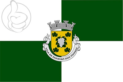 Bandera Figueiró dos Vinhos