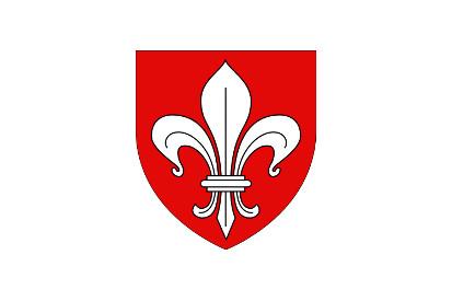 Bandera Lille