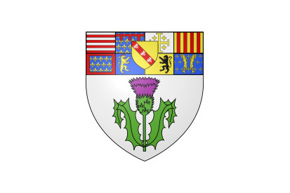 Bandera Nancy