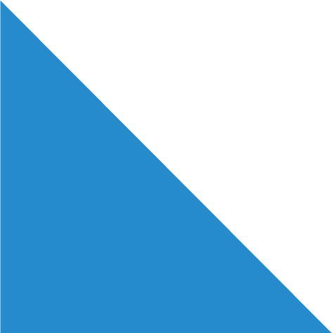 Bandera Canton de Zurich