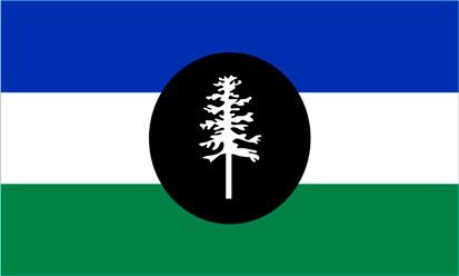 Bandera Duwamish