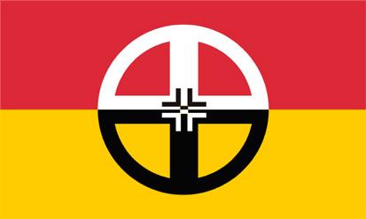 Bandera Healing World Flag