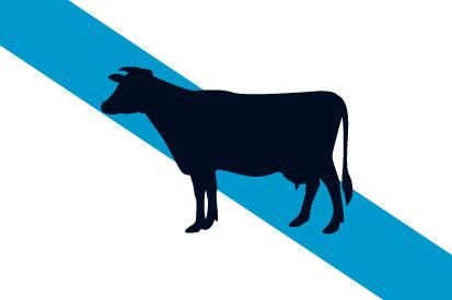 Bandera Galicia Vaca