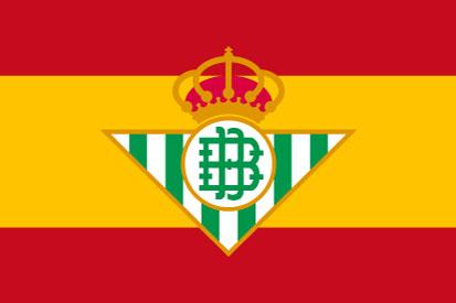 Bandera España personalizada 2