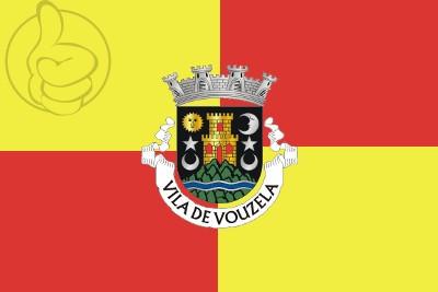Bandera Vouzela
