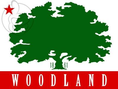 Bandera Woodland, California