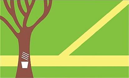 Bandera Assis Brasil