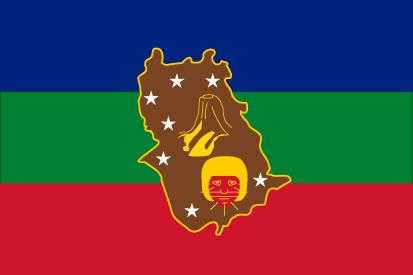 Bandera Estado de Amazonas