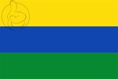 Bandera Departamento de Guainía