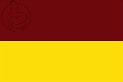 Bandera Departamento de Tolima