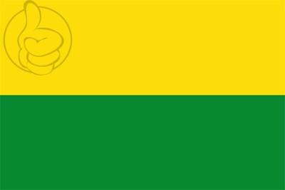 Bandera Departamento de Vichada