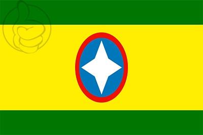 Bandera Bucaramanga
