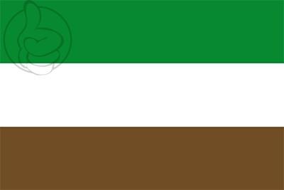 Bandera Arauquita