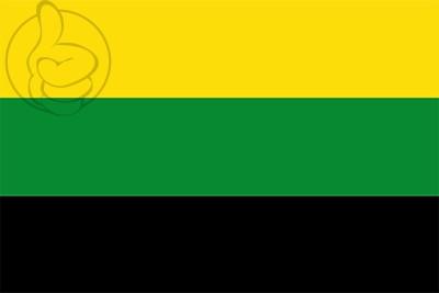 Bandera Remedios