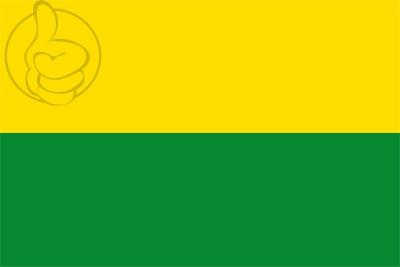 Bandera Valdivia