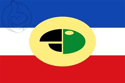 Bandera Carepa