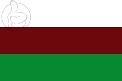 Bandera Jenesano
