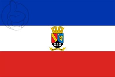 Bandera Chillán Viejo