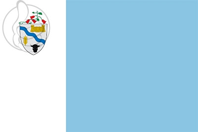 Bandera Río Bueno