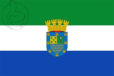 Bandera Peñalolén