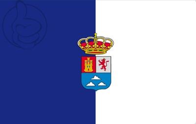 Bandera Province de Las Palmas