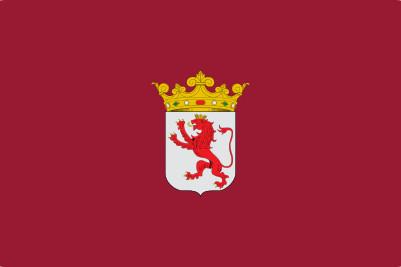 Bandera Province de León