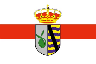 Bandera Oliva de Plasencia