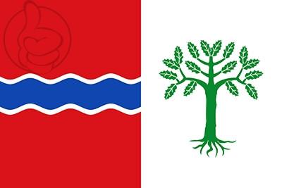 Bandera Fuentelencina