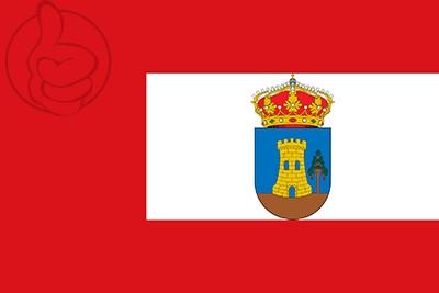 Bandera Condemios de Arriba