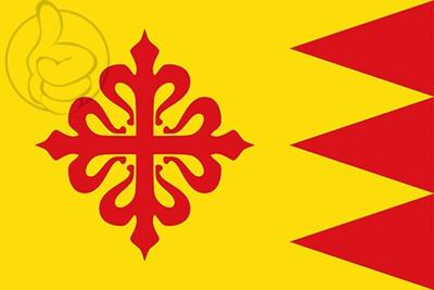 Bandera Puebla de Don Rodrigo