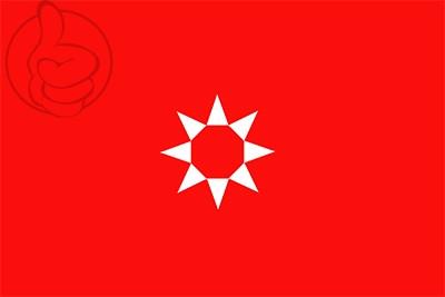 Bandera Rivas Vaciamadrid