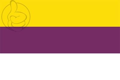 Bandera Viñols y Archs