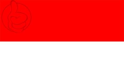Bandera Navamorales